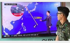 کره شمالی: ترامپ فقط زبان زور را میفهمد/ طرح حمله به گوام هفته آینده آماده میشود